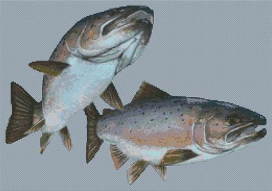 Arctic Salmon PDF