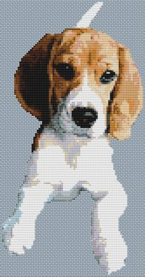 Young Beagle PDF