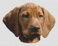 Vizsla Puppy PDF