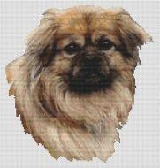 Tibetan Spaniel - Fawn PDF