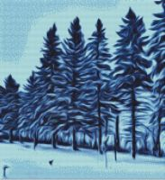 Snowing in the Pines PDF