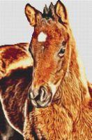 Bay Foal PDF