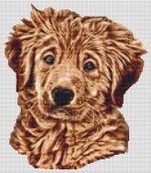 Wet - Golden Retriever Pup PDF