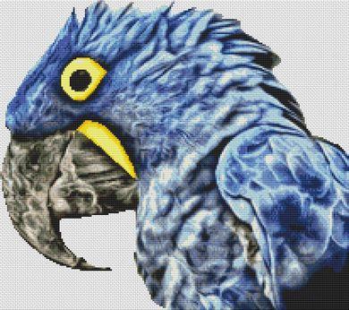 Blue Parrot 2