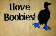 Love Boobies