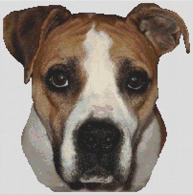 American Bulldog 2 PDF