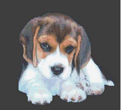 Beagle Puppy PDF