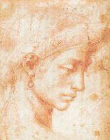 Michelangelo - Ideal Face PDF