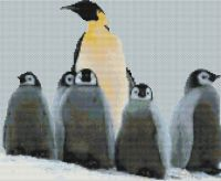 Penguin Family PDF
