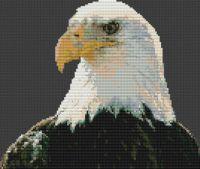 Regal Bald Eagle PDF