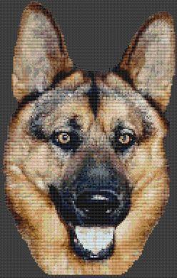 Spirit - German Shepherd PDF