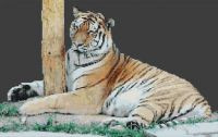 Shhh! Sleeping Tiger PDF