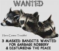 Wanted PDF