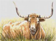 Texas Longhorn PDF