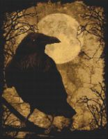 My Raven PDF