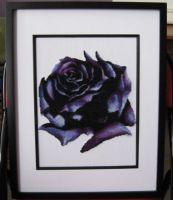 Dark Rose PDF