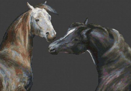 Pair of Arabians PDF