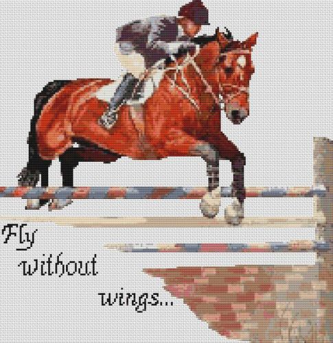 Fly Without Wings PDF