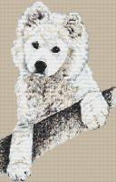Samoyed Pup PDF