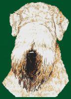 Soft Coated Wheaten Terrier PDF