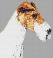 Wire Fox Terrier PDF