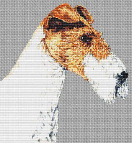 Wire Fox Terrier PDF