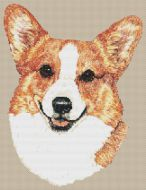 Welsh Corgi PDF