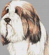 Bearded Collie PDF