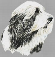 In Motion - Bearded Collie PDF