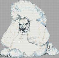 White Poodle PDF