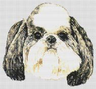 Shih Tzu Puppy Cut PDF
