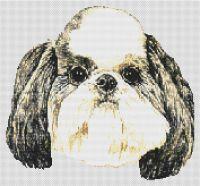 Shih Tzu Puppy Cut