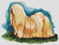 Lhasa Apso Full Body