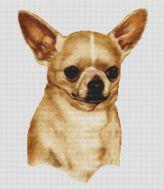 Chihuahua 2 PDF