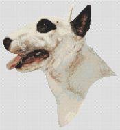 Spot the Bull Terrier PDF