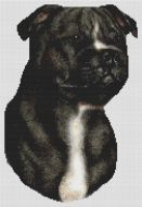 Black and White Staffordshire Terrier PDF