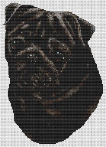 Pug - Black PDF