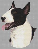 Black and White Bull Terrier PDF
