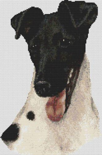 Black Masked Fox Terrier PDF