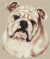 White Bulldog PDF