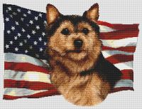 Patriotic Norwich Terrier