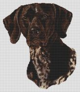 German Shorthaired Pointer 2 PDF