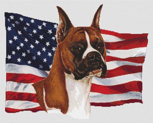 Patriotic Boxer Cropped Ears PDF
