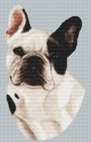 Spotted French Bulldog PDF