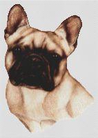 Fawn Masked French Bulldog PDF