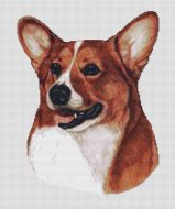 Red White Corgi PDF