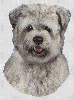 Blue Glen of Imal Terrier