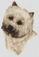 Wheaten Cairn Terrier PDF