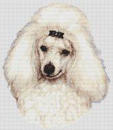 White Poodle 2 PDF