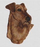 Irish Terrier PDF
